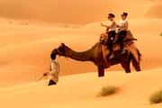 Camel Safari, Rajasthan Camel Safari, Rajasthan Camel Safari Tour, Camel