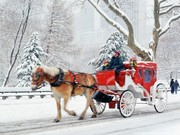 Tour America - Christmas Shopping special. New York from only €454pp